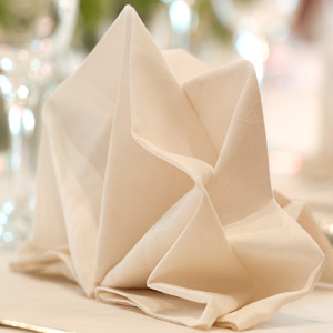 shop fabric napkins